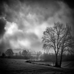 Morning Mist by MichiLauke