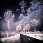 Country Road infrared