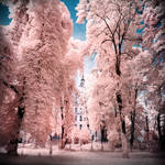 Jewish Cemetery Berlin infrared color
