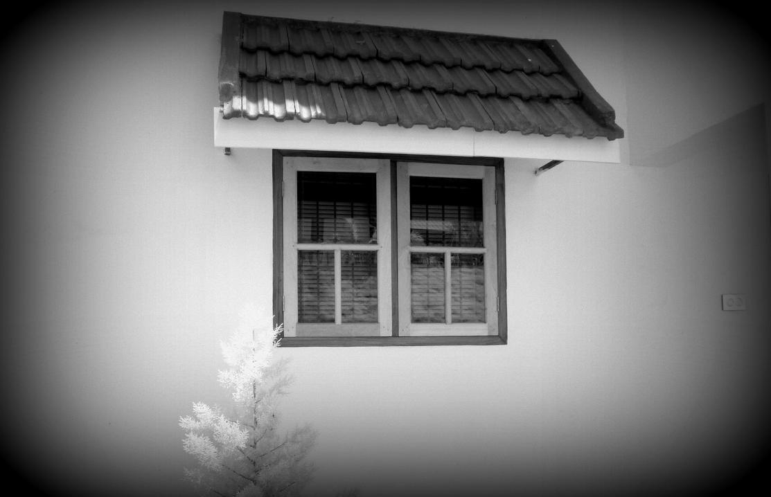 Window infrared by MichiLauke