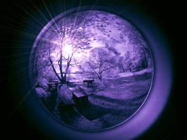 Wonderland - infrared...
