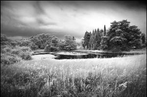 Little Lake - Berlin Botanical Garden infrared by MichiLauke