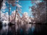 Summer in September infrared by MichiLauke