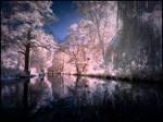 Summer in September II infrared by MichiLauke