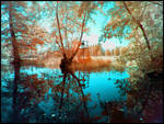 Waterscapes infrared