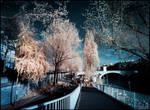 Paris infrared