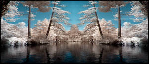 Dreamland infrared