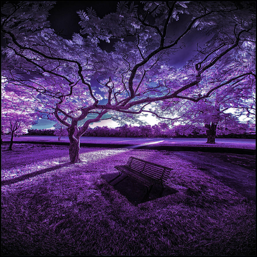 The Final Hours - Infrared by MichiLauke
