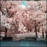 Afternoon Walk Infrared by MichiLauke