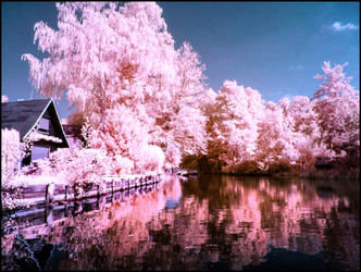 Spreewald infrared by MichiLauke