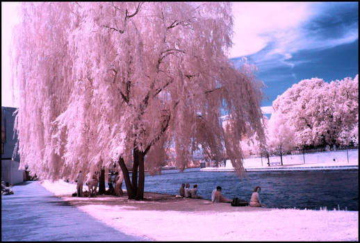 Chilling in Berlin infrared