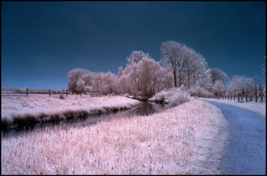 Full Sunny Springtime Day Infrared by MichiLauke