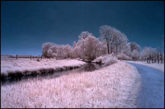 Full Sunny Springtime Day Infrared