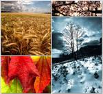 Four Seasons...