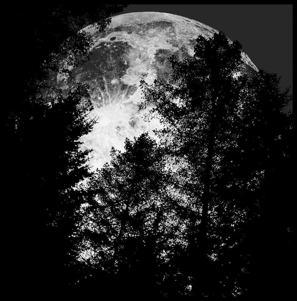 Full Moon... by MichiLauke