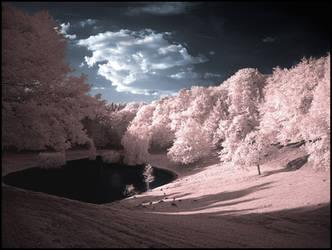 Infrared Valley... by MichiLauke
