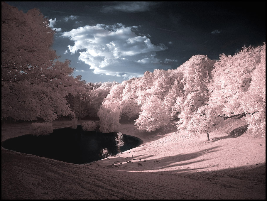 Infrared Valley...