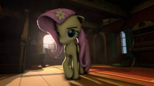 One Shy Pony