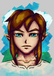 LoZ: Breath of the Wild Link