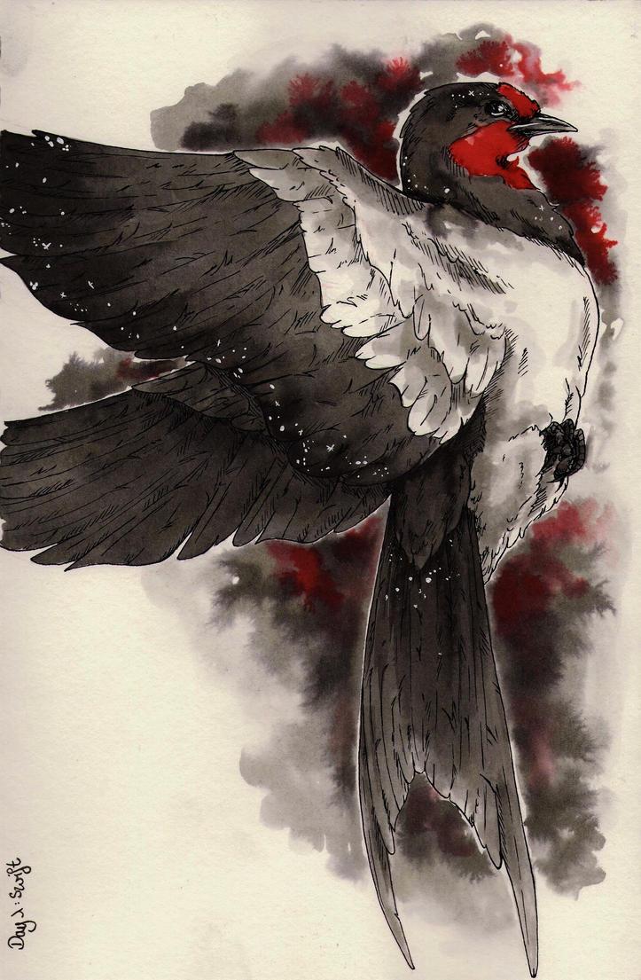 Day 1 - Swift by ArtmadebyRed