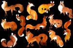 Flowy Foxes