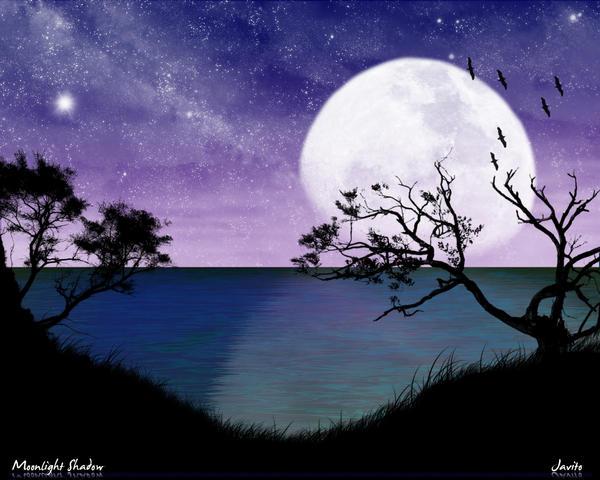 Moonlight Shadow by ~JJGP on deviantART