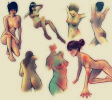 Studies of Female Anatomy