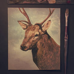Deer sketch on acrylics