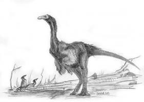 Some big Crane by Antresoll