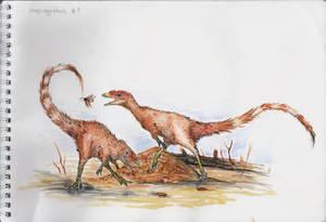 Compsognathus sketch