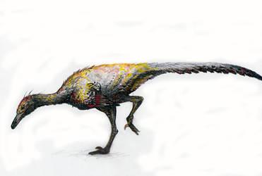 Saurornithoides mongoliensis