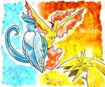 Kanto Bird trio
