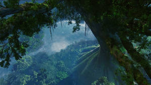 Avatar HD Wallpaper 18
