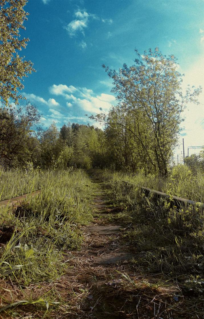 Forgotten Way by ihateyouare