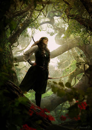 Woodland archer by sekiq