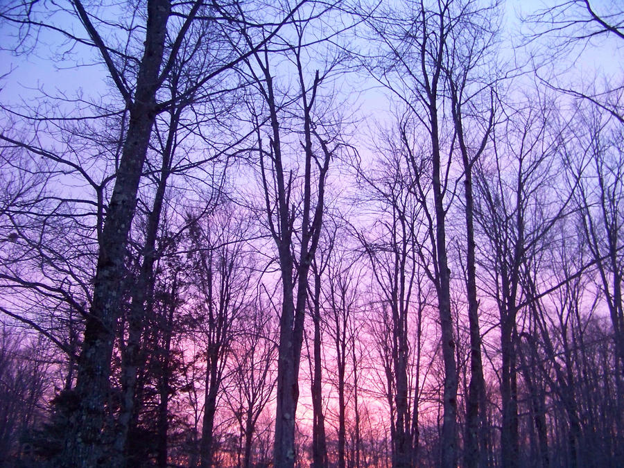 sunset II by TheGreatAhtnamas