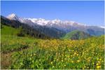 Kazakhstan. Jaylau. by photoaurora