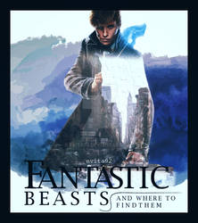 Fantastic Beasts Poster by evita92