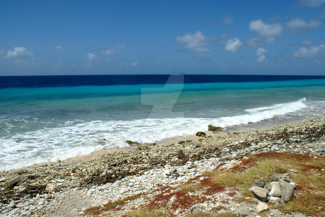 bonaire chat sites Travel tips a collection rbc bank, antilles banking corporation bonaire chat 'n browse offers 24-hour wifi and internet services.