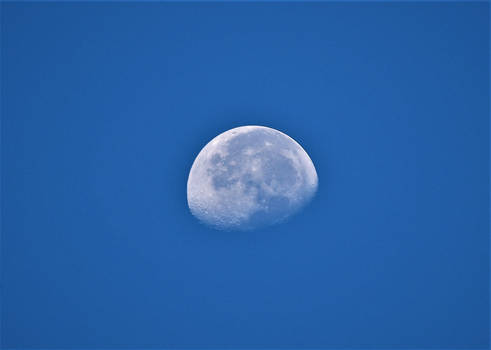 Moon at 7:30 am on 8-8-2020