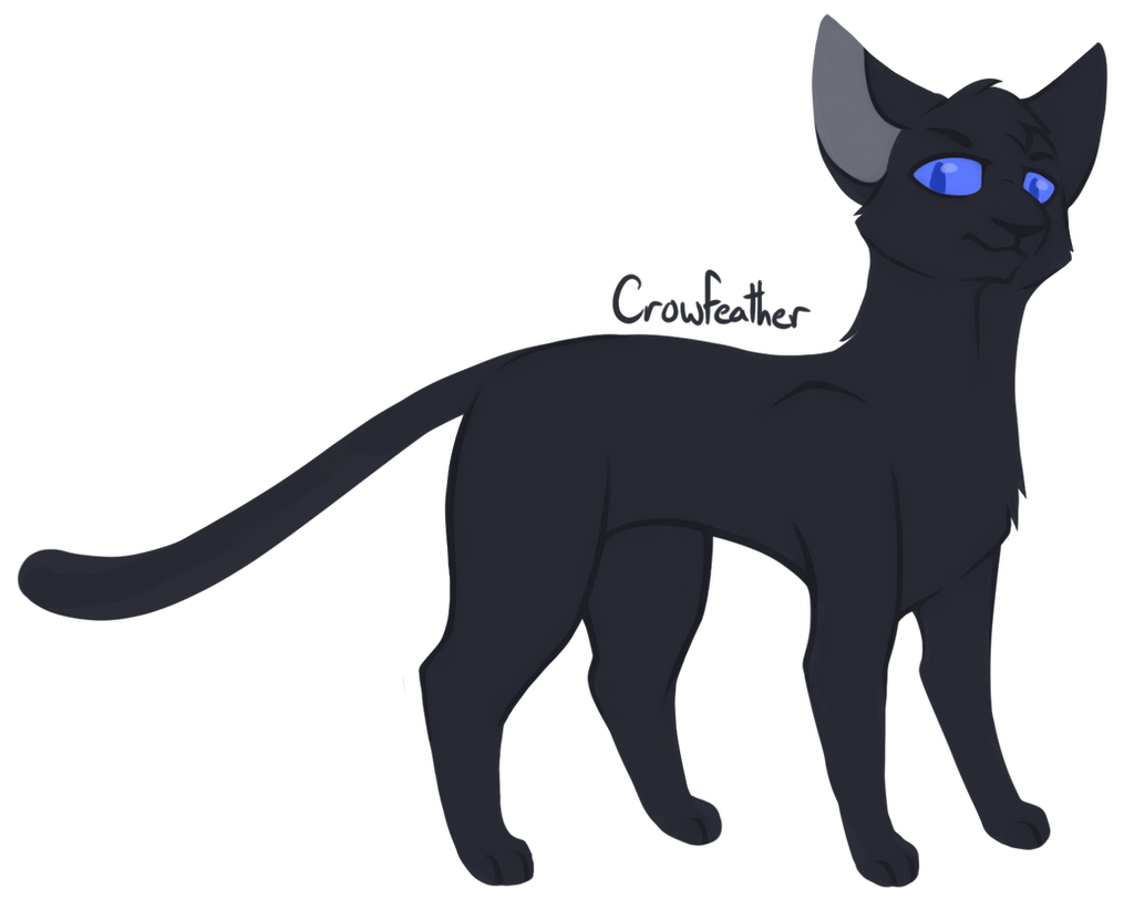Warrior Cats Project