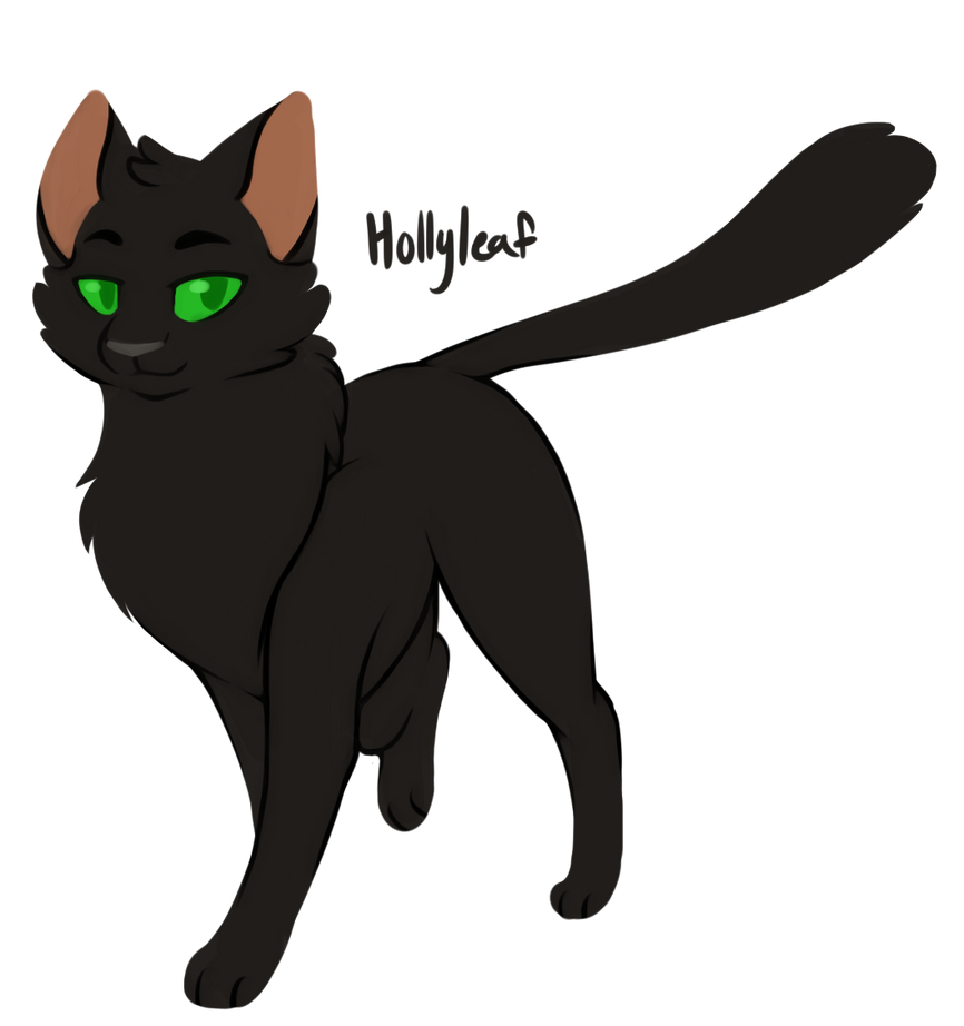 100 WARRIOR CATS CHALLENGE 26