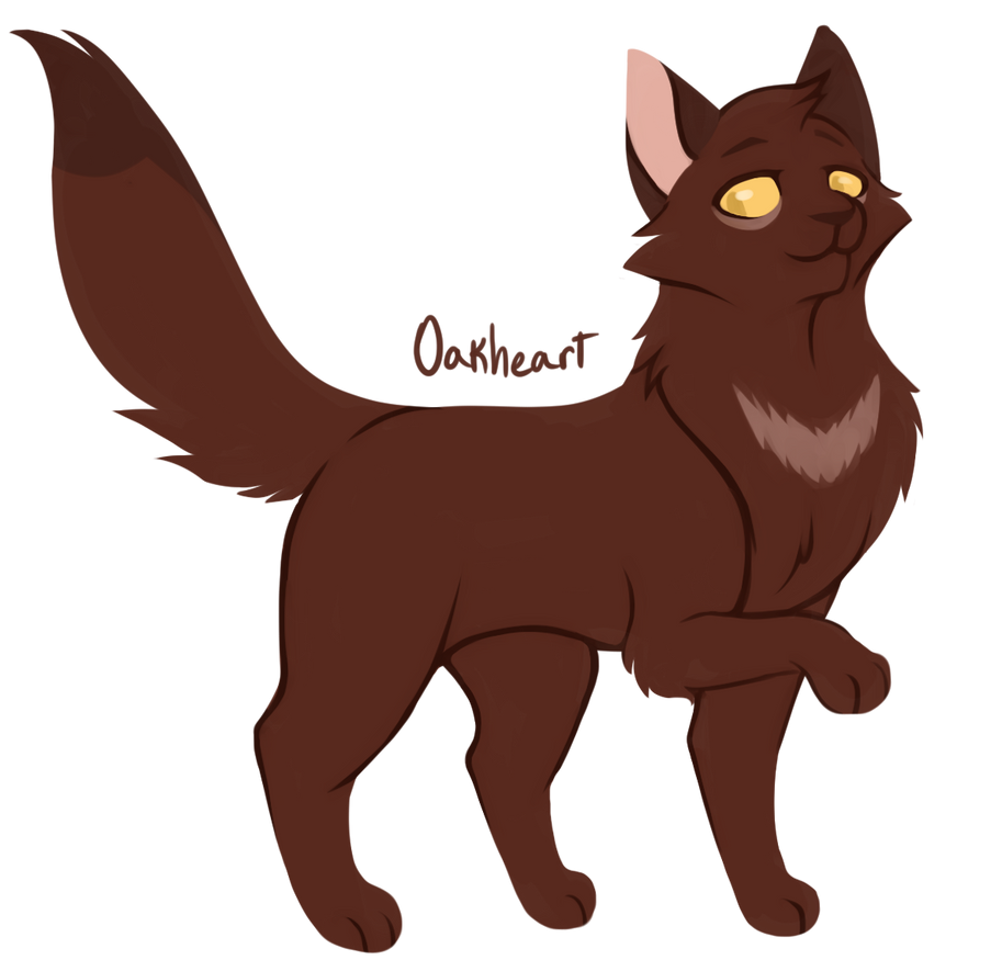 100 warrior cats challenge 33 oakheart by toboe5tails