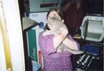 Christmas Kitten 2007