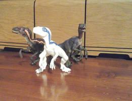 My Raptor Squad