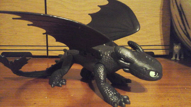 Toothless joins the collection family.