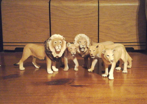 2019 Lion Pride