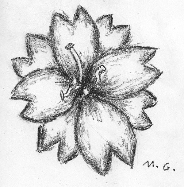 Cute charcoal flower by itosugi on deviantart for How to draw a cute flower