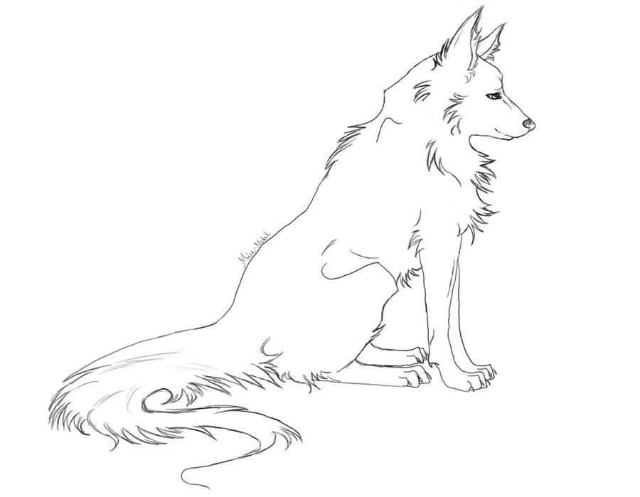 Image Result For Animal Blank Coloring