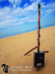 Twisted Medicine Box on the Beach